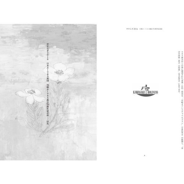 kawasaki05